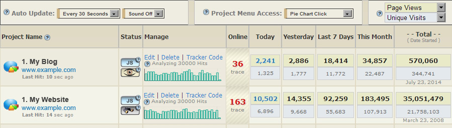 Website Visitor Tracker  Visitor Hit Counter  Traffic Statistics